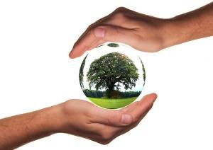 Regole ufficio più sostenibile